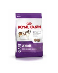 Royal Canin Giant Adult 15+4 kilos gratis!!