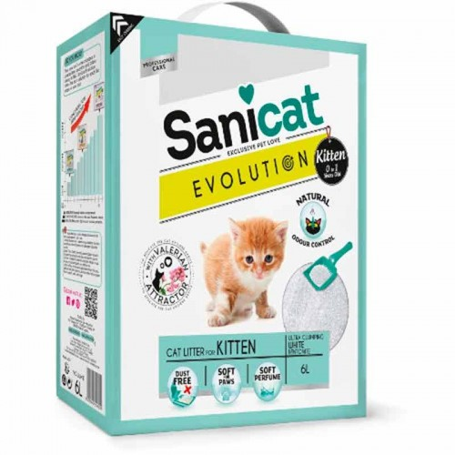 Arena Sanicat Evolution kitten