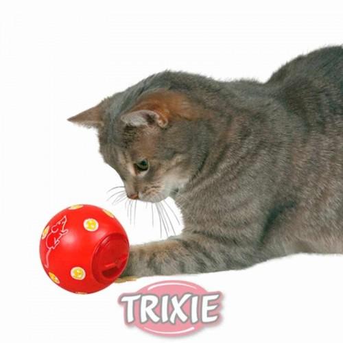 Pelota Cat Activity