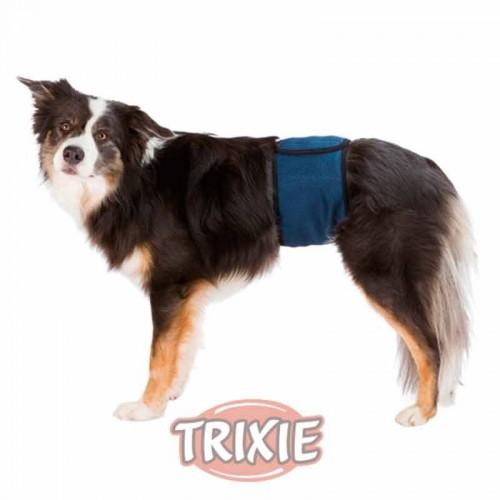 Banda abdomen perro macho