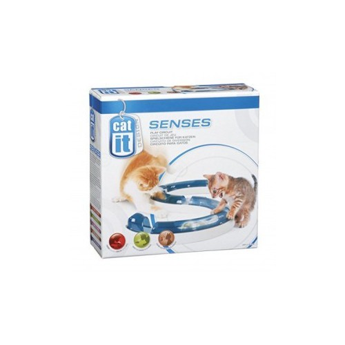 Circuito juego gato Cat it Senses