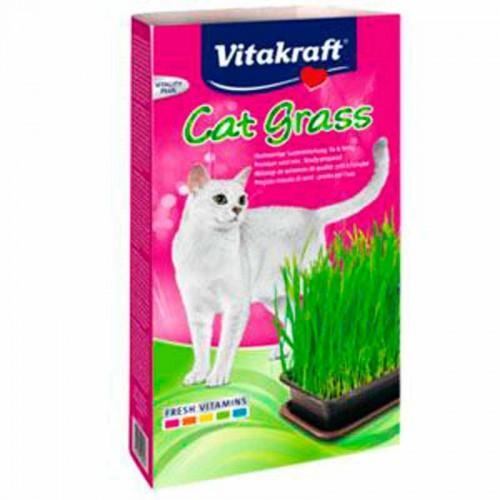 Hierba para gatos Vitakraft