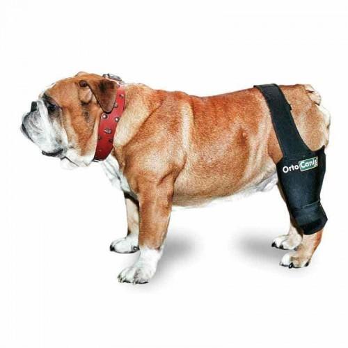 Potector de rodilla Ortocanis