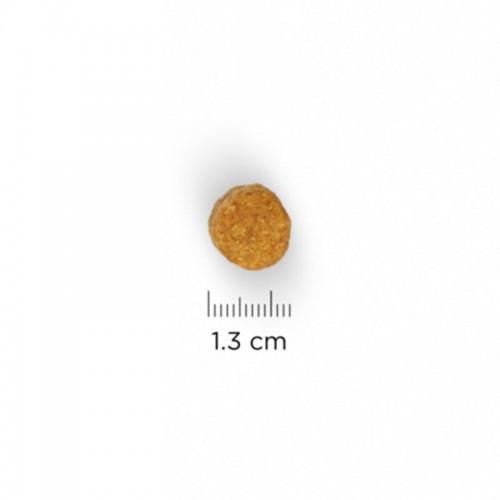 Hill´s Adult Light Medium 12 kilos