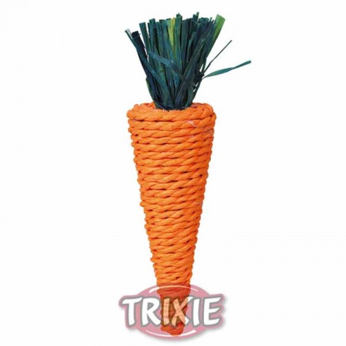 Zanahoria paja para roer