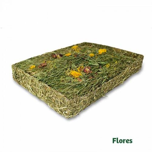 Prado de hierbas con flores