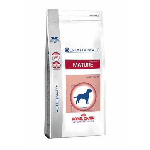 RC VCN Mature Dog