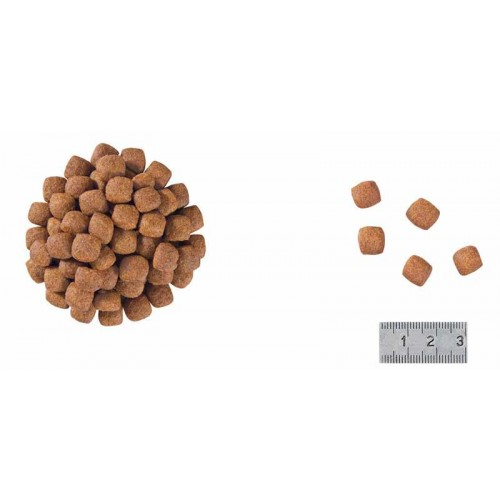 RC VCN Skin Hairball