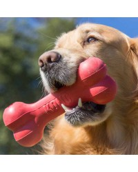 Hueso kong Goodie Bone para cachorros