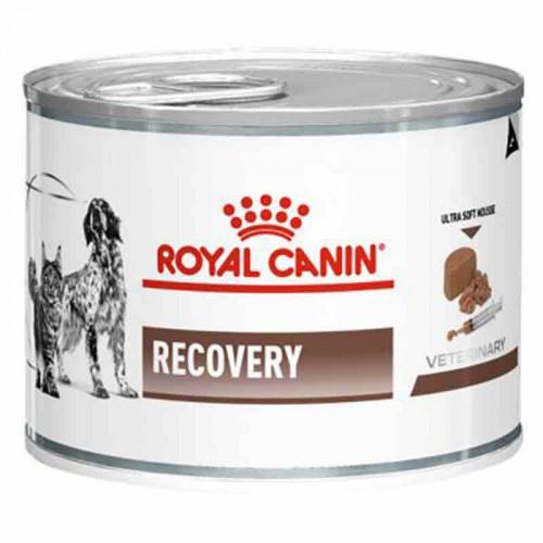 Royal Canin Recovery Húmedo
