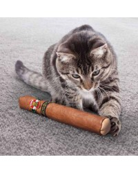 Kong Cat Better Buzz Cigar